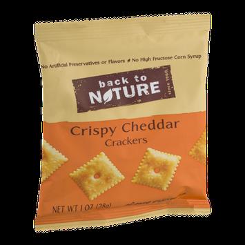 Back To Nature Mini Crispy Cheddar Crackers