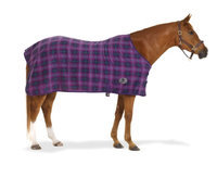 Centaur Plaid 220G Fleece Sheet 66