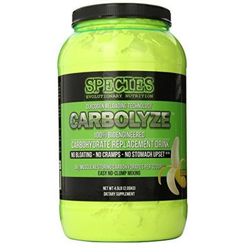 Species Nutrition Carbolyze, Fruit Punch, 4.51-pound Tub