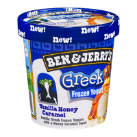 Ben & Jerry's® Vanilla Honey Caramel Greek Frozen Yogurt