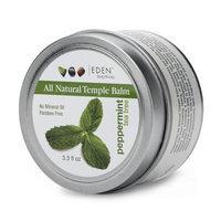 Eden Body Works EDEN BodyWorks Coconut Shea Hair Balm 6oz