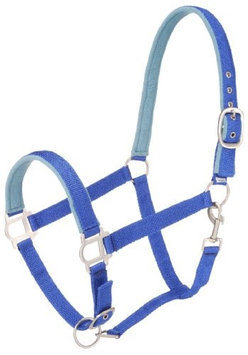 Tough-1 Nylon Padded Halter with Snap Pony Blue/Royal