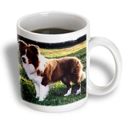 Recaro North 3dRose - Dogs Border Collie - Border Collie Tan and White - 11 oz mug
