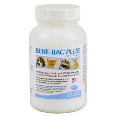 PetAg Bene-Bac Plus Probiotic Pet Powder