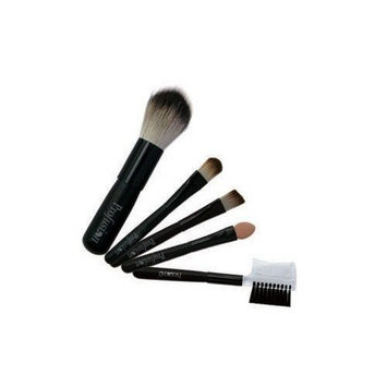 Shany Cosmetics Shany© 5pc mini Cosmetic Brush Set - Blush,Precision Concealer,Eye, Lip, Eyebrow