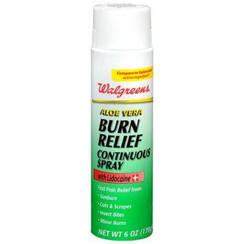 Walgreens Aloe Vera Burn Relief Continuous Spray