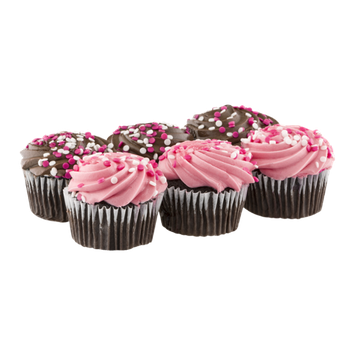 Ahold Chocolate Cupcakes - 6 CT