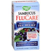 Nature's Way Multi-Symptom Flu Relief Elderberry Chewable Lozenges
