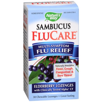 Nature's Way Multi-Symptom Flu Relief Elderberry Chewable Lozenges