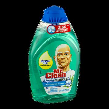 Mr. Clean Liquid Muscle Multi-Purpose Cleaner with Febreze Meadows & Rain