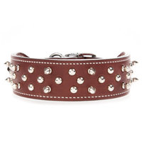Bret Michaels Pets RockTM Spiked Dog Collar