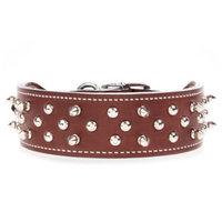 Bret Michaels Pets RockTM Spiked Dog Collar