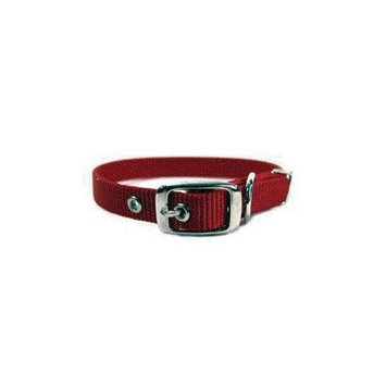 Hamilton 5/8-Inch by 12-Inch Single Thick Nylon Deluxe Dog Collar