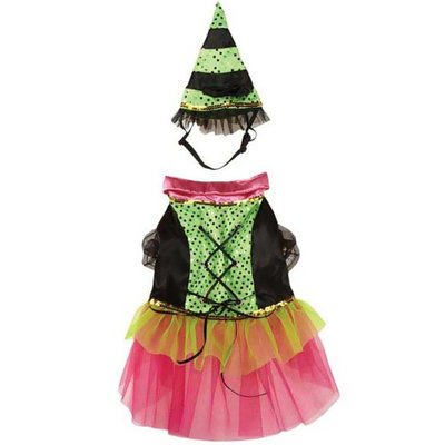 Zack & Zoey Zack and Zoey Witchy Business Pet Costume XL