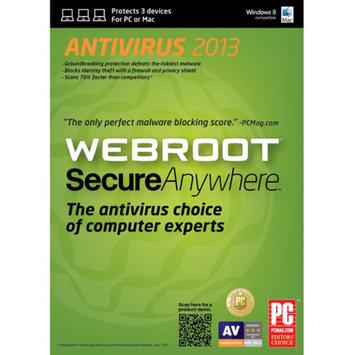 Webroot SecureAnywhere AntiVirus Software