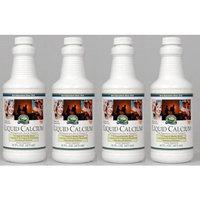Nature's Sunshine Naturessunshine Calcium Liquid Supports Bones Health 16 fl.oz (Pack of 4)