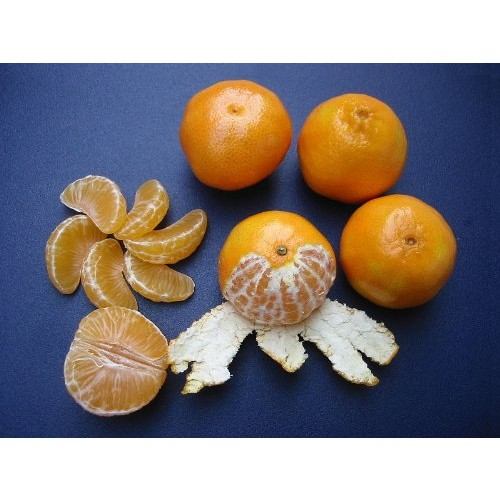 OLE CUTIES ORANGES CALIFORNIA GROWN CLEMENTINES FRESH FRUIT PRODUCE 5 POUNDS