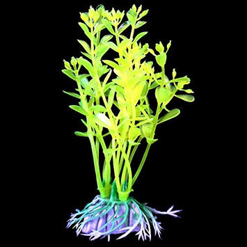 Pure Aquatic Glow Elements Neon Green Lindernia - Cluster - 4 in.