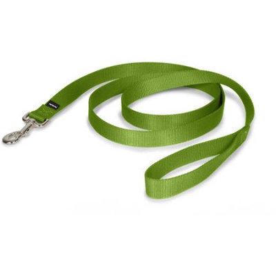 Premier Pet Nylon Dog Leash Color: Green, Size: 1.13