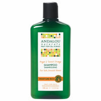 Andalou Naturals Moisture Rich Shampoo
