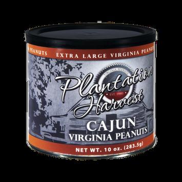 Plantation Harvest Cajun Virginia Peanuts