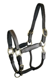 Gatsby Padded Leather Halter Fully Adjustable Cob Brown