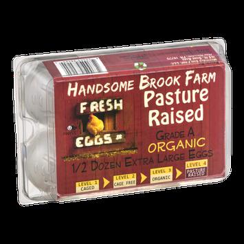 Handsome Brook Farm Grade A Organic Pasture Raised Extra Large Eggs - Half-Dozen