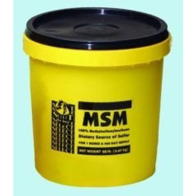 Richdel Inc Select-the-best MSM Powder for Horses - 20 lbs