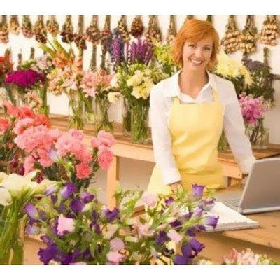 Mupirocin Flower Shop, Florist Complete Start Up Business Plan NEW 2008!