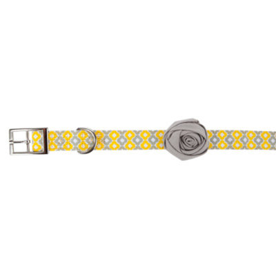 Top PawA Bella Graphic Dog Collar