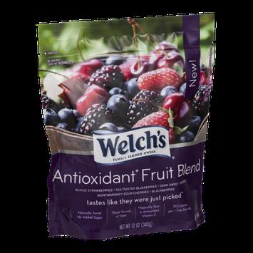 Welch's Antioxidant Fruit Blend