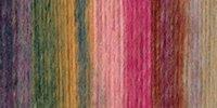 Lion Brand Amazing Yarn-Strawberry Fields