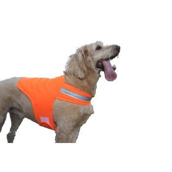 DOG NOT GONE Safety Dog Vest 34