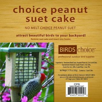 Bird's Choice Choice Peanut Suet Cake - 11.75 Oz