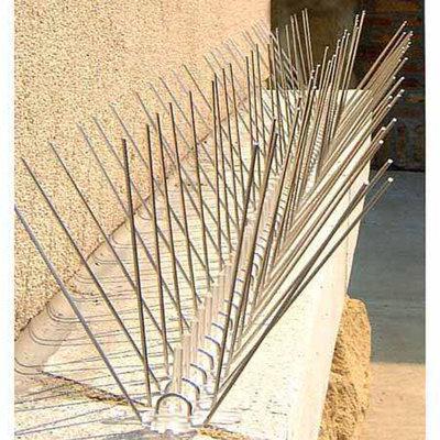 Bird-X Extra Wide Stainless Bird Spikes 10 Ft
