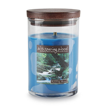 Candles International Inc. 9 1/2 Ounce Scented Jar Candle