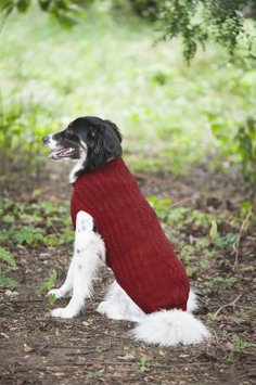 Ethical Products Inc Ethical Donegal Cable Knit Dog Sweater Small Red 651024