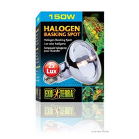 Hagen Exo Terra Sun-Glo Daylight Halogen Lamp