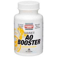 Hammer Anti Oxidant Booster 60 Capsules