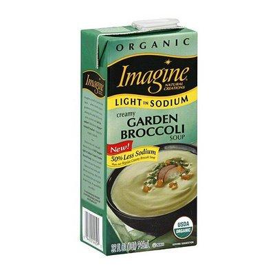 Imagine Foods Broccoli Soup