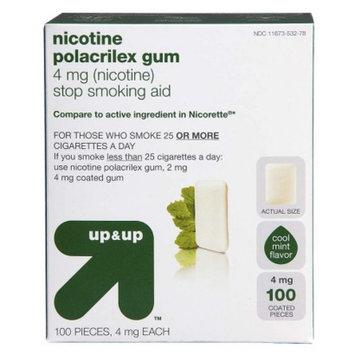 Up & Up Nicotine Polacrilex 4-mg. Gum - Cool Mint (100-pk.)