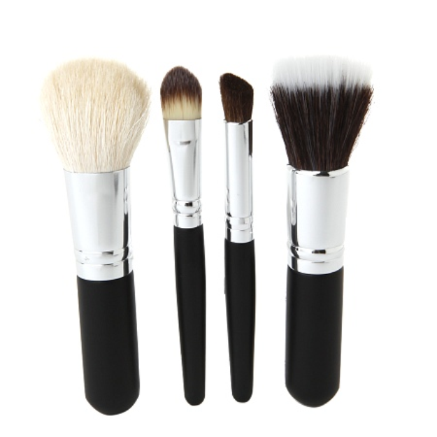 Studio Basics Mineral Makeup Brush Set