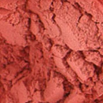 Fresh Minerals freshMinerals Mineral Blush Powder, Blushing, 3 Gram