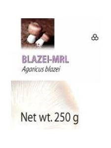 Mycology Research Lab's Mycology Research Labs - Blazei-MRL - 90 Tablets