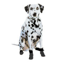 Pedigree Perfections Pedigree Perfection PT-S-BLK Pawtectors Small Paw Boots for Your Pet, Black, Set of 4