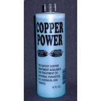 Copper Power Endich Copper Power (Endich) ACP0016B Blue Treatment for Marine Fish, 16-Ounce