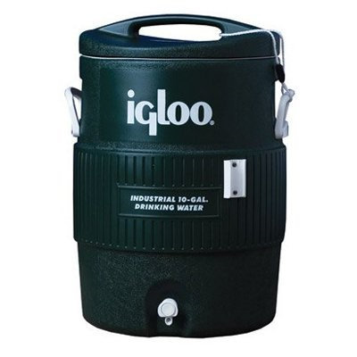 Igloo 40 qt. Green Cooler