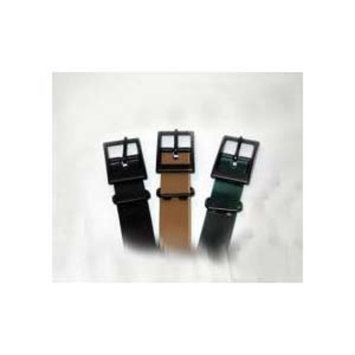 Tri Tronics Collar with Square Buckle and Black Hardware Color: Black