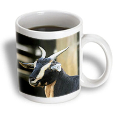 Recaro North 3dRose - Farm Animals - Goat - 11 oz mug