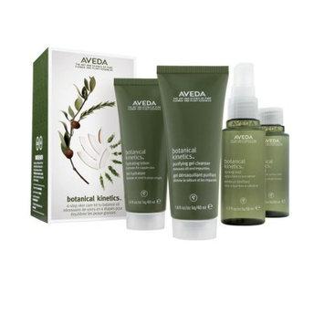 Aveda Botanical Kinetics 4-step skin care kit to balance oil